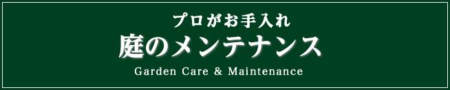庭の保全管理メンテナンス