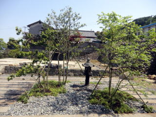 ソヨゴとモミジを植栽。足元にはヤブランとリュウノヒゲ。キチっとした雰囲気ではなく、野趣的に。灯篭は既存のものを復旧。