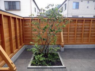 新築のお宅に植栽を施しました。ベニバナヤマボウシ、低木としてブルーベリー、地被としてヤブラン、リュウノヒゲを植栽しました。 玄関を入って正面の窓から見える景色です。