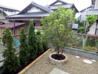 鬼門にヒイラギモクセイを植栽。