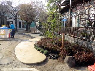 完成(園庭のグラウンドから散歩道を望む) 園路のデザインを統一しつつ、なおかつ植栽可能な所は植栽し、反対側より緑のボリューム感を出しました。  今回植栽する上でいろいろな宿根草(毎年同じように咲く)を植えました。 (スミレ、マンリョウ、スイセン、アジュガ、ハナニラ、ヒガンバナ、アマチャ、クリスマスローズ、スズラン、ミヤコワスレなどなど。) 一年通して常にどこかで花が見られる様に設計を施しました。