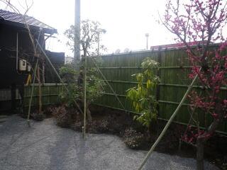 完成  見ごたえ充分の大きめ建仁寺垣が出来上がりました。今回はサイズの関係で真竹を使用しましたので今は青々していますが、やがて色が落ちてまた違った風景になってきます。