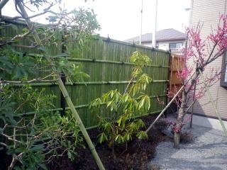 今回の植栽はサルスベリ、ヤマモモ、シャクナゲ、ウメ、サツキ。花頃には賑やかになりそうです。
