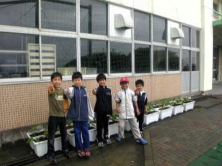 完成(^^)  完成した緑のカーテンを前にグ~~~ッ あとは栽培委員の子供たち水やりを頼みます。 このあと経過報告しますのでお楽しみに。