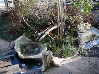 つくばいは自然な感じに。流木を多数使い、その周りにはコケやヤブコウジを植えてあります。