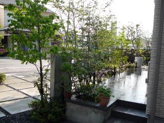 玄関側からの景色。これから四季折々の景色が楽しめそうです。