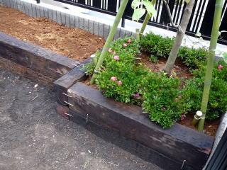 枕木を使った花壇の端にはアクセントに樹木を。