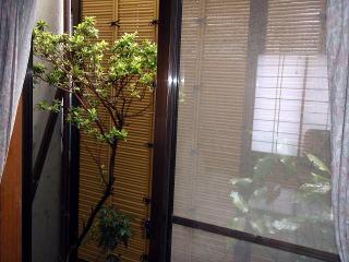 完成  近すぎて良い画像が撮れませんでした。竹垣はアルミ柱とイミテーションの竹をした物です。場所が家の中を通らないと入れない中庭でしたので、長持ちする用な仕様を選択。
