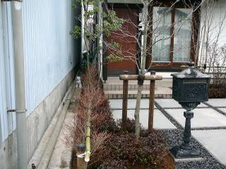 隣家との隙間はどうしても物置き場となってしまいがち。道路から見えないようにする工夫が中木と生垣です。