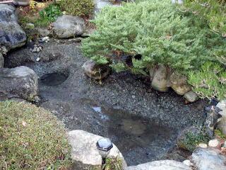 水草、泥、水を全て取り除き高圧洗浄をかけた状態です。