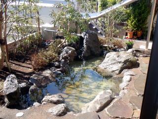 自然な雰囲気をかもし出す池。部屋の中から。