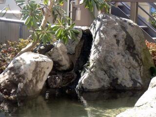 池の滝口のアップ。