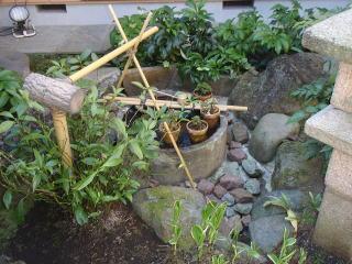 着手前  中庭です。蹲周りを綺麗にし、周辺はクリスマスローズを移植し、草押さえに土舗装を施した上に砂利を敷くというご依頼。