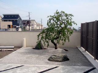 完成 ちょっとしたスペースですが坪庭を作ったことで一気に引き締まった雰囲気。かなりかっこよくなりました。