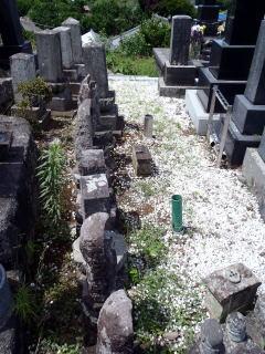 着手前 広い墓地なので二列目、三列目があります。これ全て一つの家の墓地です。 古い墓石は傾いている物も多く、全て修復しました。