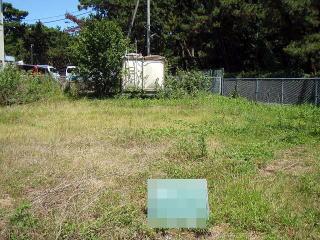 除草前 アパートの庭 除草用の機会も様々なものを装備しているので小さい庭から広範囲な敷地まで対応。