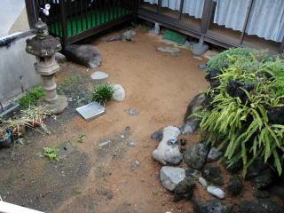 着手前  今回は中庭の改修工事。元々は池がありそれを埋めた状態。小さなお子様がいるので高低の少ないフラットな庭にしたいとのご要望でした。