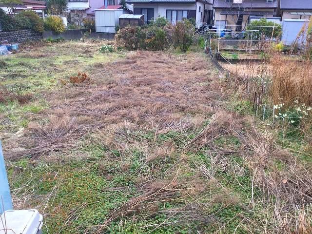 まずは整地の前に草を刈ります。