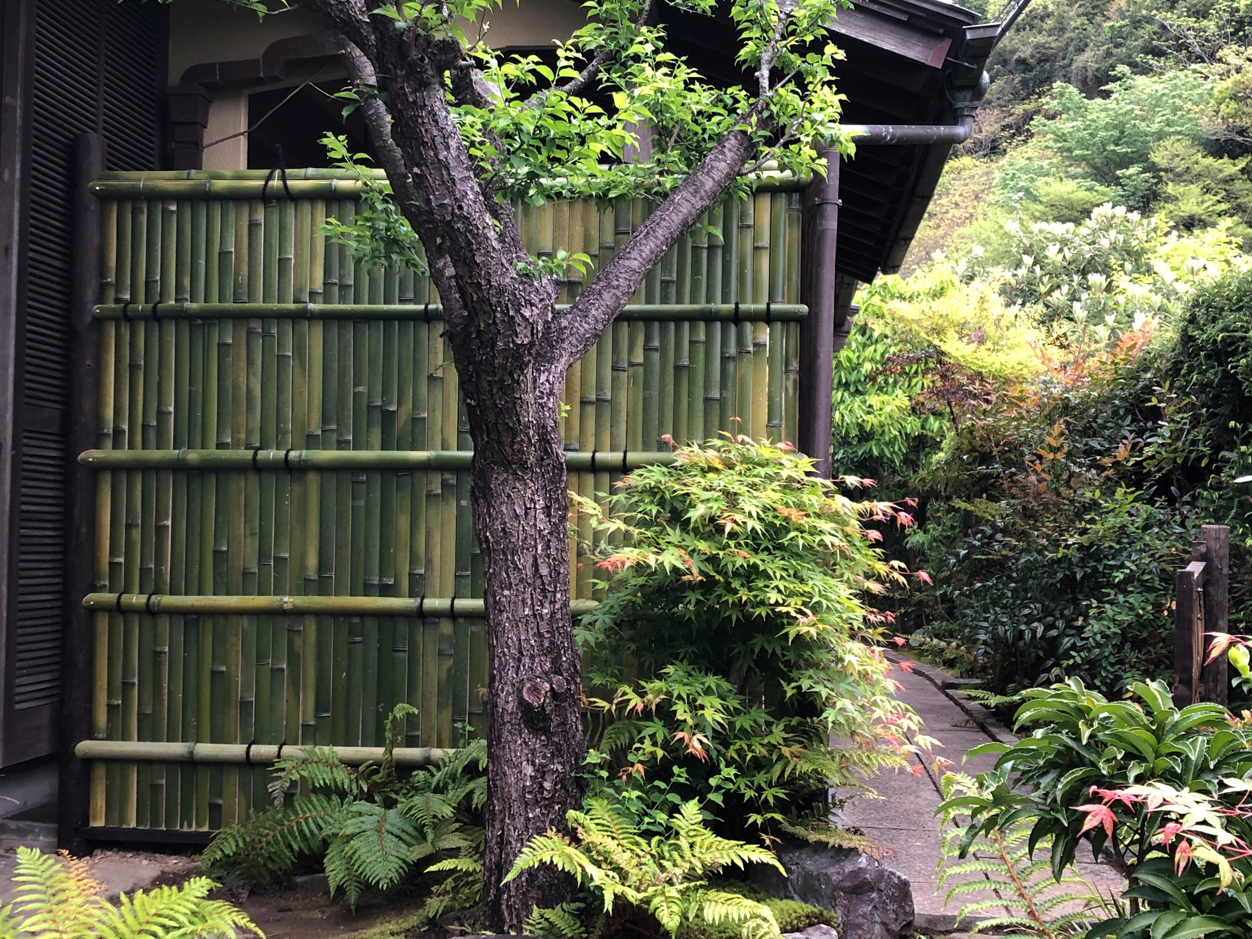 色の戻った竹垣で雰囲気もかなり変わりました。